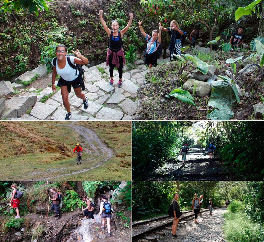 camino-inca-jungle-3