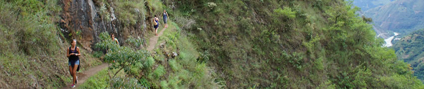 camino-inca-jungle-4-d2